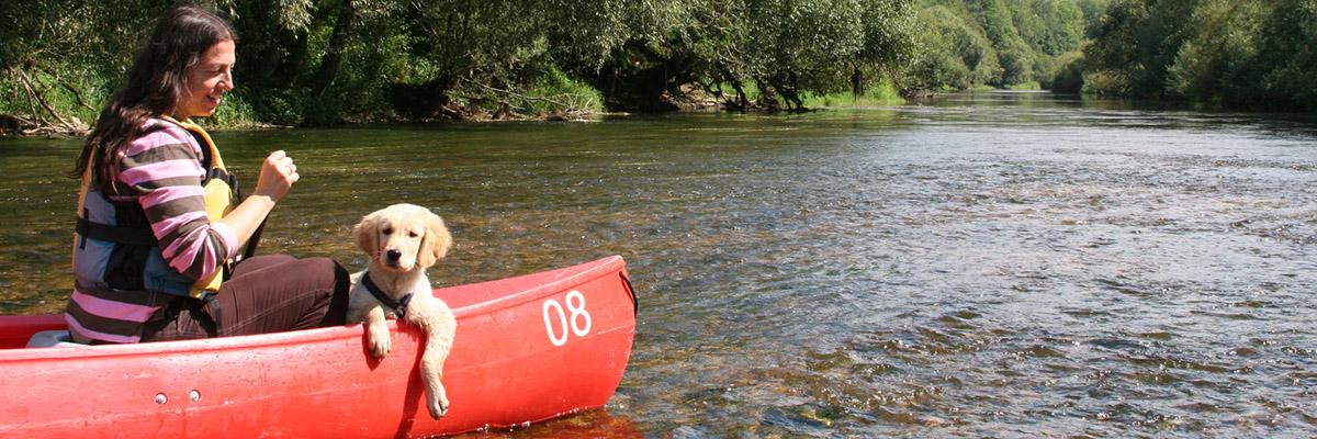 Mit Hund im Kanu auf der Donau unterwegs