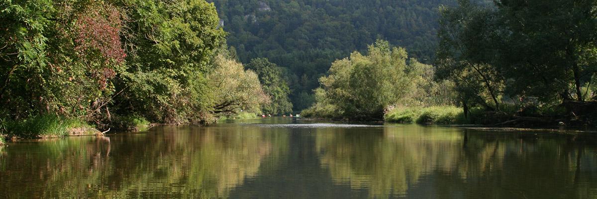 Kanus auf der Donau