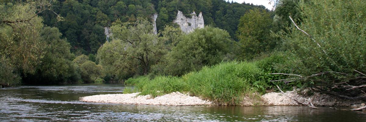 Uferbereich an der Donau